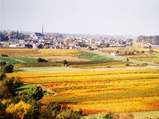 heritage-domaine-de-la-grande-chauviere